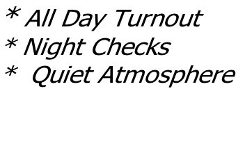 * All Day Turnout * Night Checks *  Quiet Atmosphere